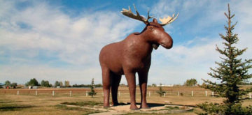 No gun fire in the Moose Wars. Yet